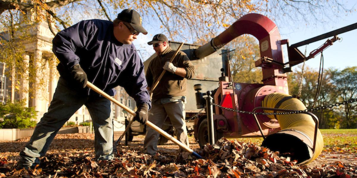 OPP Landscape workers collect leaves