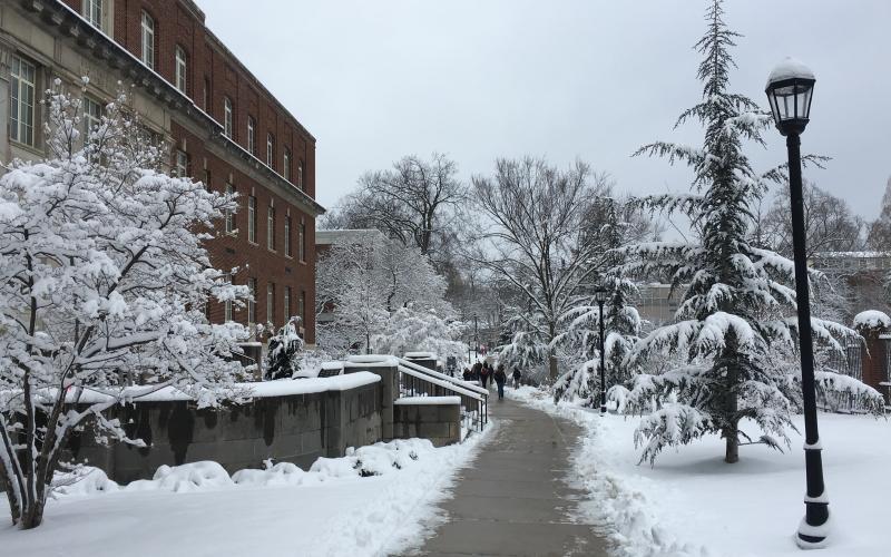 A clear sidewalk after a snowstorm