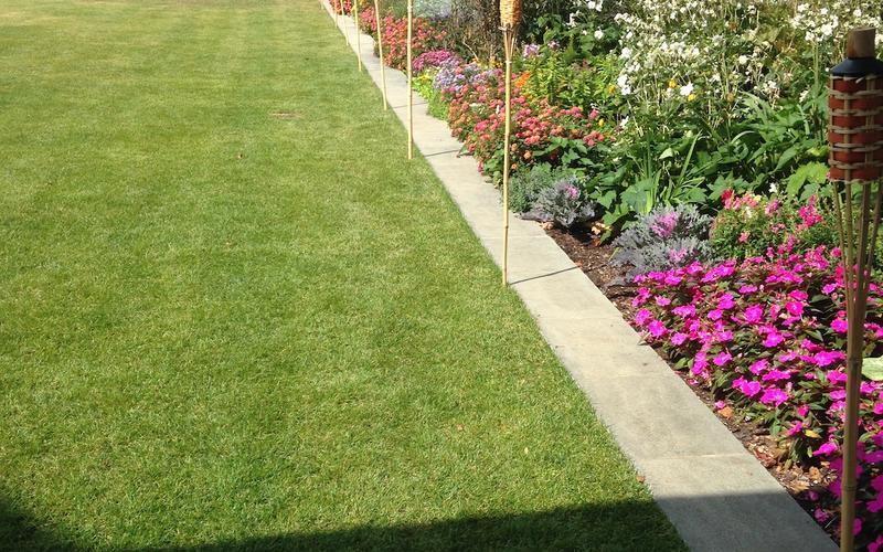 Flower garden outside the Hintz Alumni Center