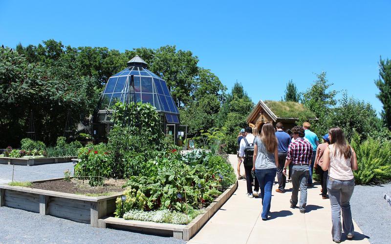 OPP interns on the Arboretum tour