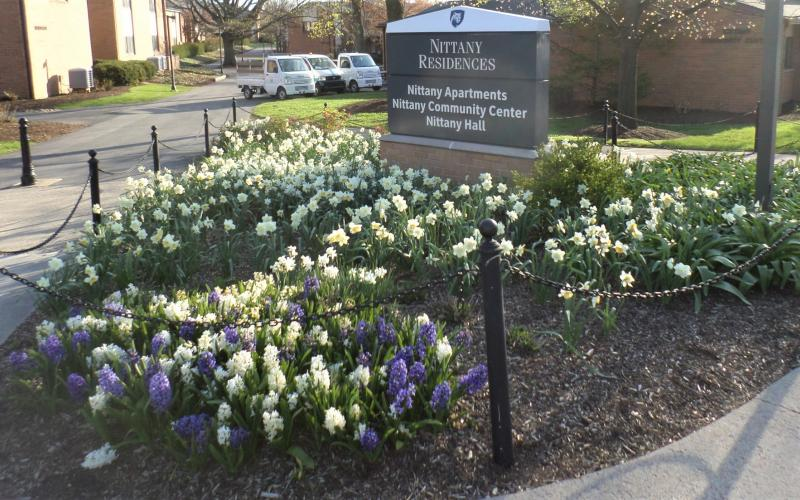 Nittany apartments flowers