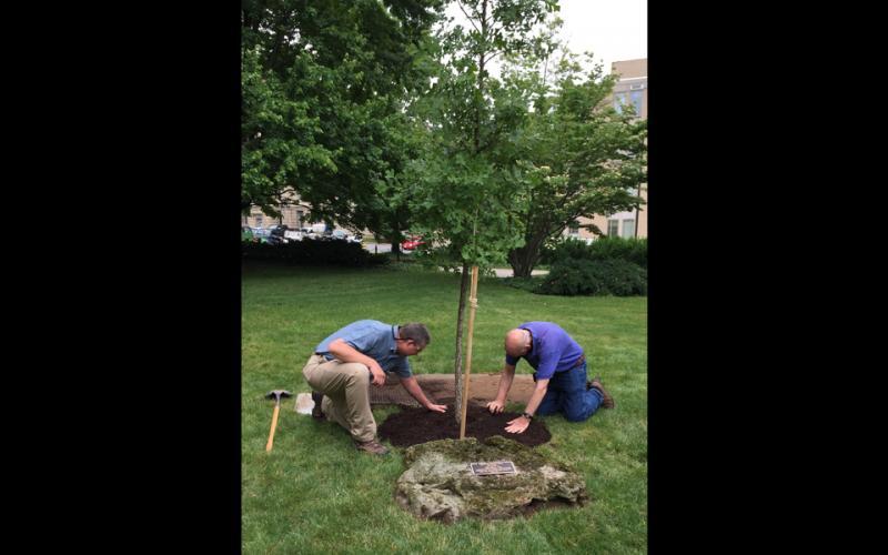 Jeff Dice plants a tree
