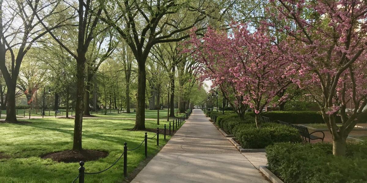 campus walkway